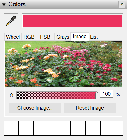 Click the image loaded in the color picker to select a color.